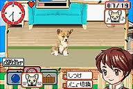 Kawaii Pet Game Gallery